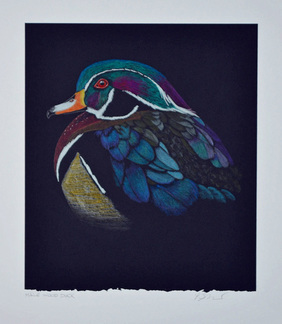 Wood Duck by Patricia Sundgren Smith