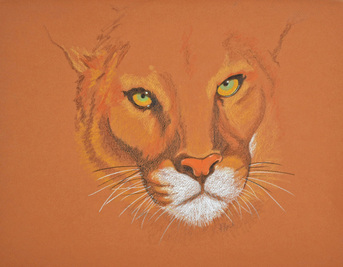 Cougar by Patricia Sundgren Smith
